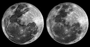 lune lapin