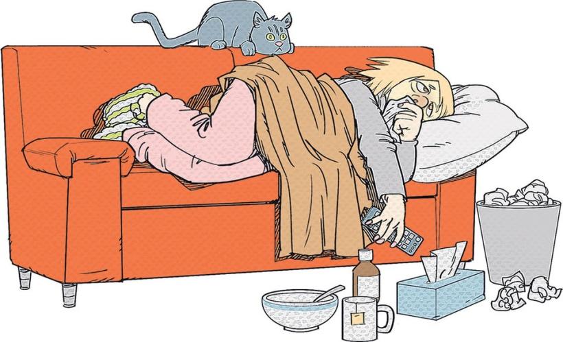 grippe virus